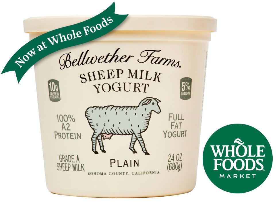 24oz-sheep-yogurt-Now-at-WholeFoods