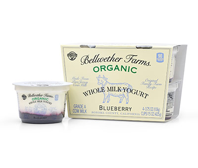 Cow Blueberry Combo