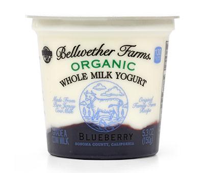 5.3oz Cow Blueberry