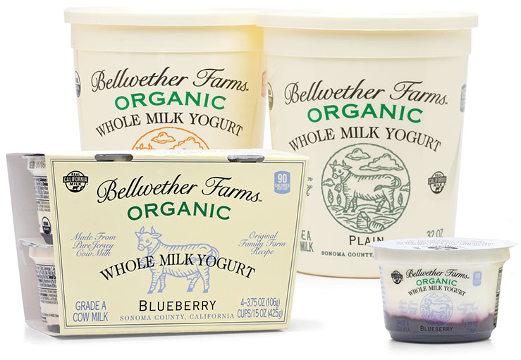 cow-whole-milk-yogurt-slide (3)
